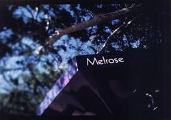 melrose sign